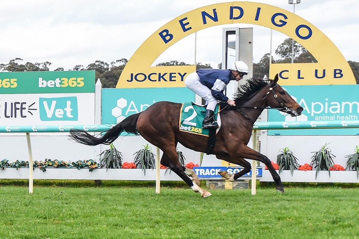 Hosier wins at Bendigo