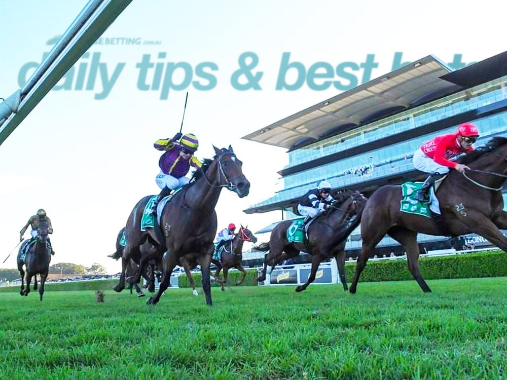 Daily Horse racing tips