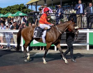 Desleigh Forster wins Weetwood Handicap with star four year old