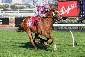 Gundec wins Derby Preview