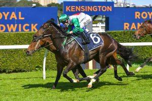 Profondo wins on debut