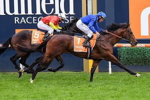 Anamoe moves into second favourite for the 2021 Cox Plate
