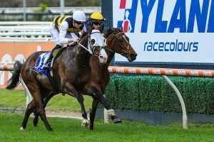 I'm Thunderstruck wins his first Group One at Caulfield