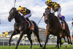 Probabeel beats $1.20 favourite in 2021 Might And Power Stakes