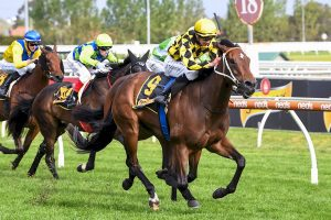 Yearning wins Thousand Guineas